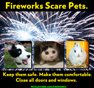 Fireworks Scare Pets
