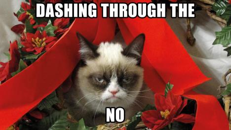 grumpy-cat-meme-christmasanimals---grumpy-cat-meme-pictures-humor-funny-cats-christmas-qcu3d2p8