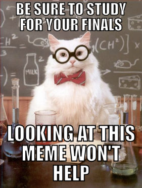 study-meme1